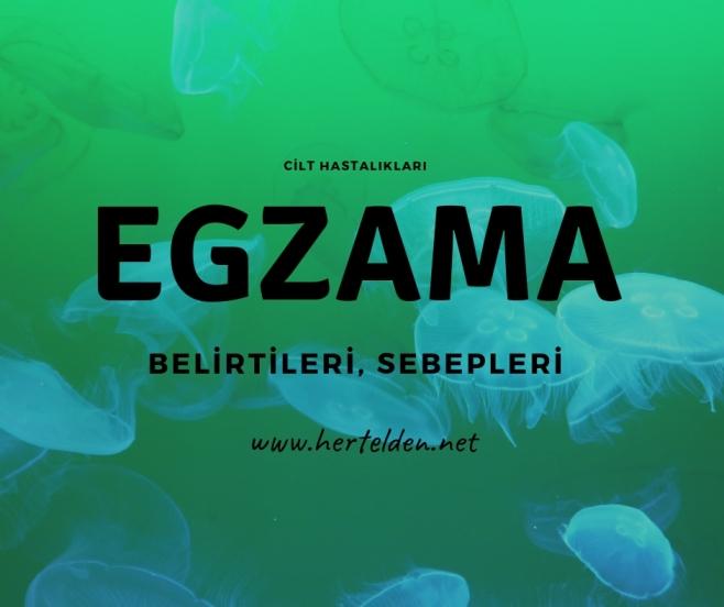 Egzama Sebepleri, Belirtileri